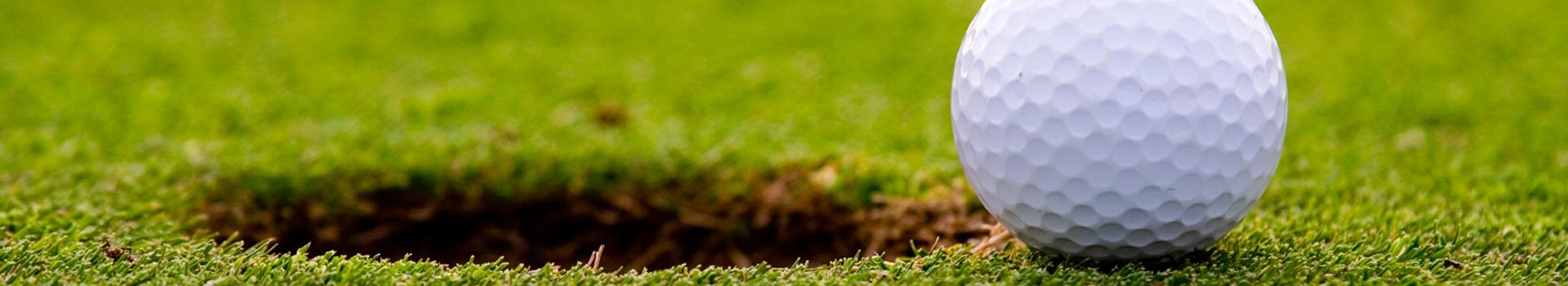 baehmann's golf and games, baehmann's golf course, golf course, mini golf, miniature golf, foot golf